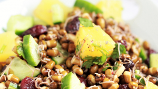 Sprouted Mung Beans Salad