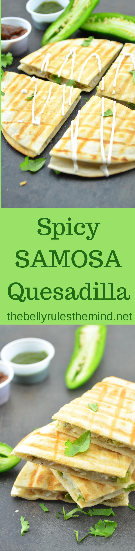 spicy-samosa-quesdillas
