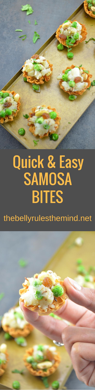 samosa-bites