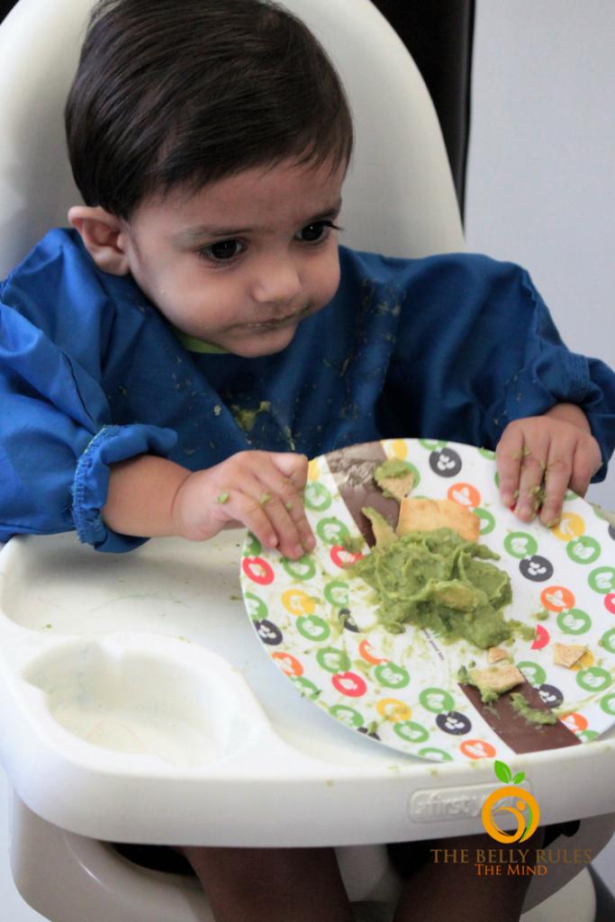 Avocado Baby Toddler Recipe