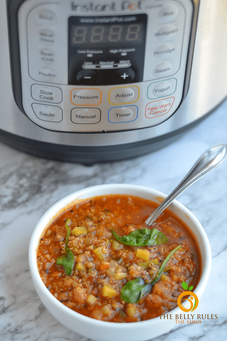 Instant Pot Vegetable Quinoa Soup