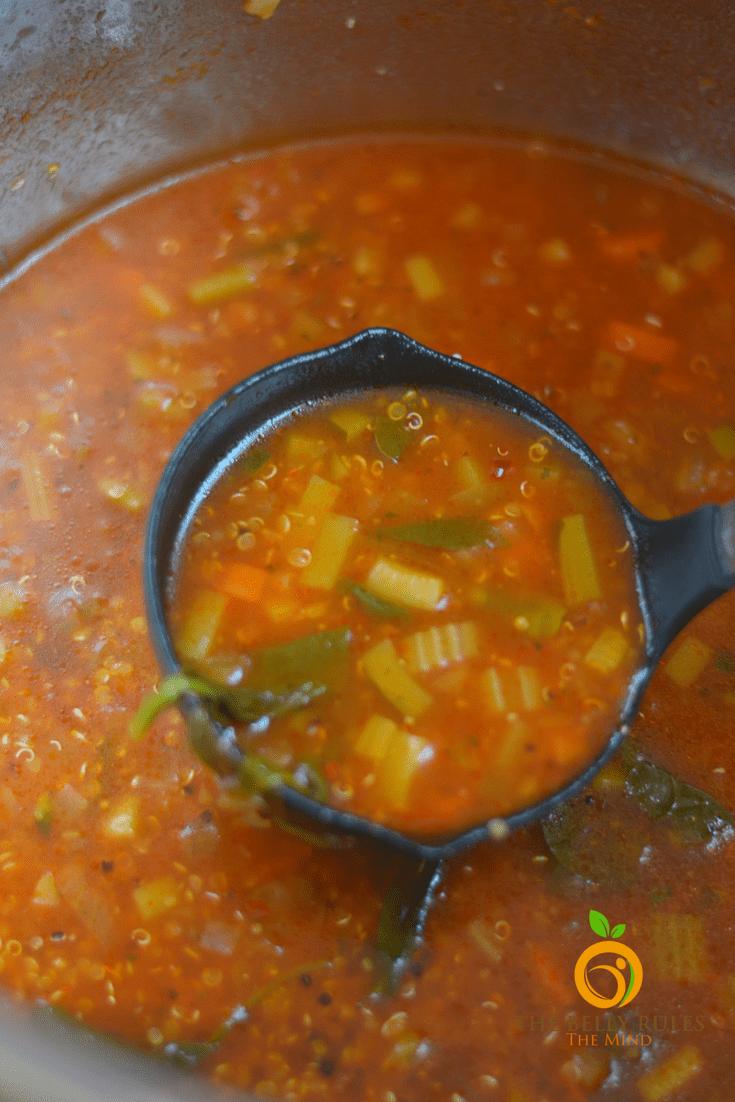 Instant Pot Vegetable Quinoa Soup