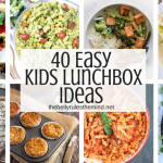 40 Easy Kids Lunch Box Ideas