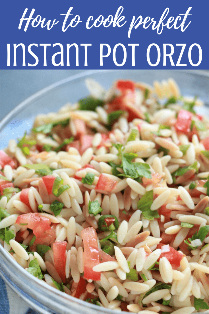 If you are looking to cool down with a refreshing cold pasta salad recipe then this Easy Summer Orzo Salad is your recipe. Made with easily available ingredients and comes together quickly, this is great for summer parties and potlucks because it's a guaranteed crowd pleaser. 5 Minutes. Vegan.