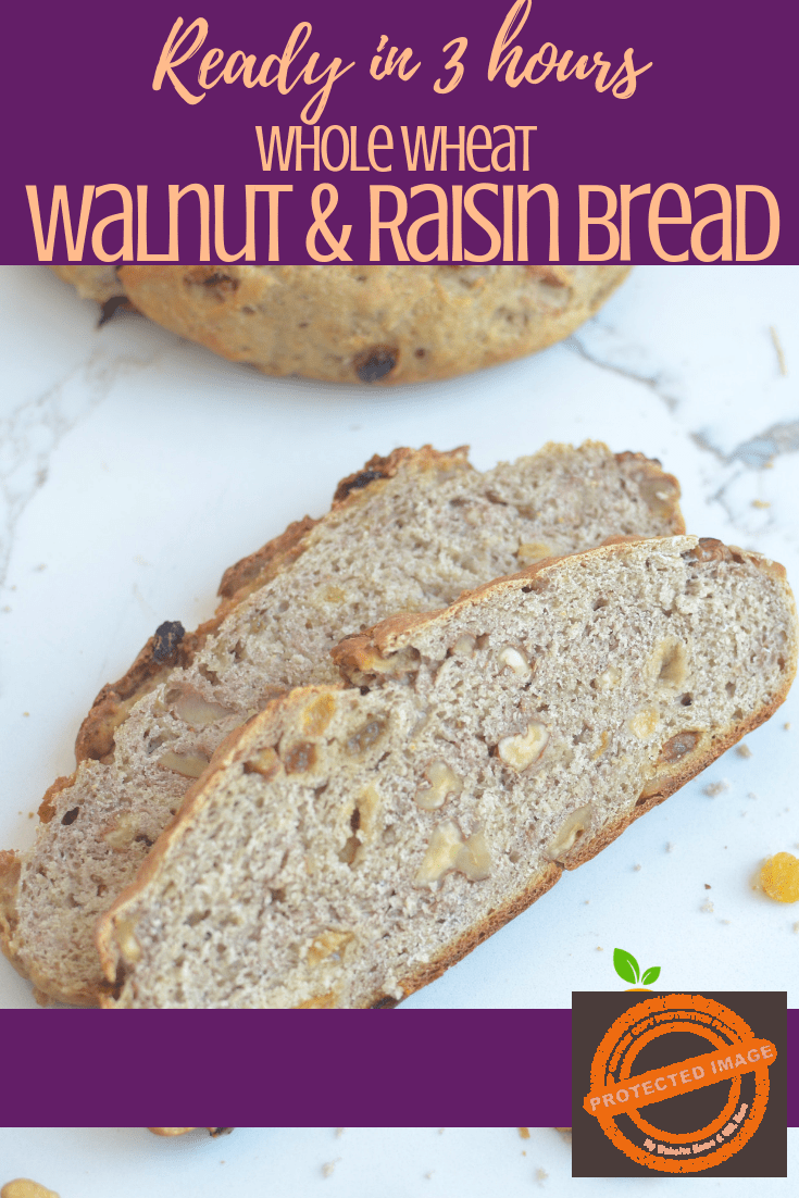 Nothing beats the aroma and smell of a fresh bread baking in your kitchen! No Knead Dutch Oven Raisin Walnut Bread is no Exception! This no-knead whole wheat bread is perfectly crusty on the outside, with a fluffy, nutty interior that's just begging for some creamy butter. Try it with your breakfast! The easiest artisan bread you will ever make!