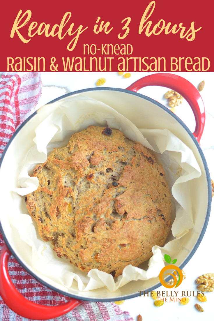 No Knead Dutch Oven Raisin Walnut artisan Bread