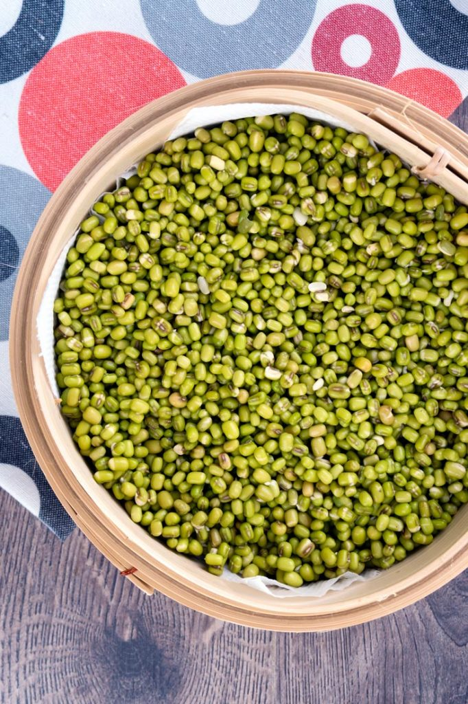 mung beans for prouting