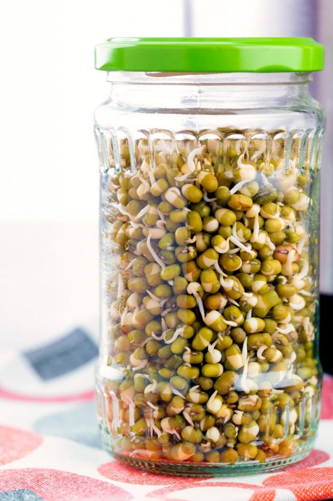 Storing Mung Beans Sprouts