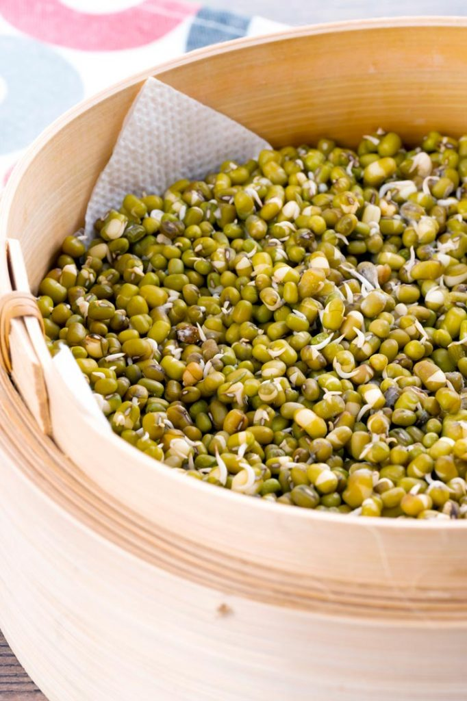how to sprout mung beans at home